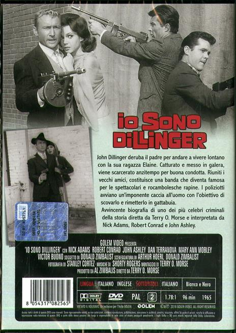 Io sono Dillinger (DVD) di Terry Morse - DVD - 2