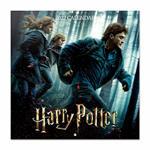 Calendario da parete 2022 Harry Potter - 30 x 30 cm