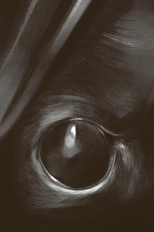 I segreti di Acquamorta. Vol. 1: Delitto al lago - Fabio Geda,Marco Magnone - 6