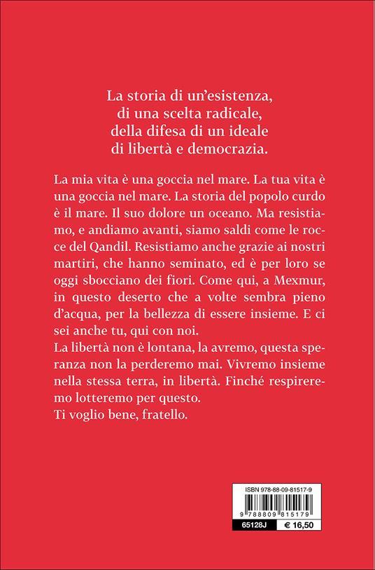 La guerriera dagli occhi verdi - Marco Rovelli - 3