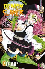 Demon slayer. Kimetsu no yaiba. Vol. 14