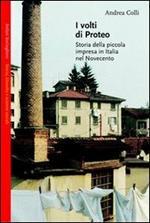 I volti di Proteo. Storia della piccola impresa in Italia nel Novecento