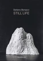 Stefano Bonacci. Still life. Catalogo della mostra (Segrate, 30 marzo-30 aprile 2019). Ediz. illustrata
