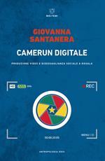 Camerun digitale. Produzione video e disuguaglianza sociale a Douala