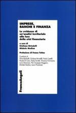 Imprese, banche e finanza. Le evidenze di un'analisi territoriale alla luce della crisi finanziaria