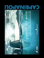 I giganti del mare. Miti e personaggi, storie, imprese e curiosità della maratona di nuoto più famosa del mondo