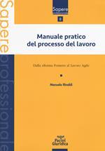 Manuale pratico del processo del lavoro. Dalla Riforma Fornero al Lavoro agile