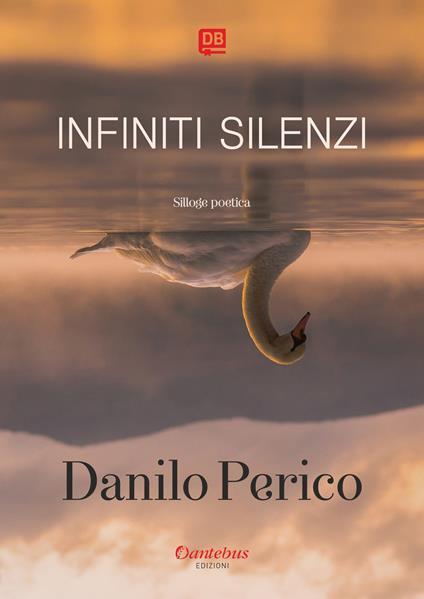 Infiniti silenzi - Danilo Perico - ebook